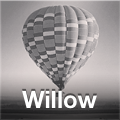 filtr Willow